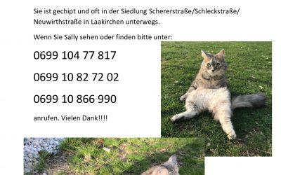 Sally in Laakirchen vermisst